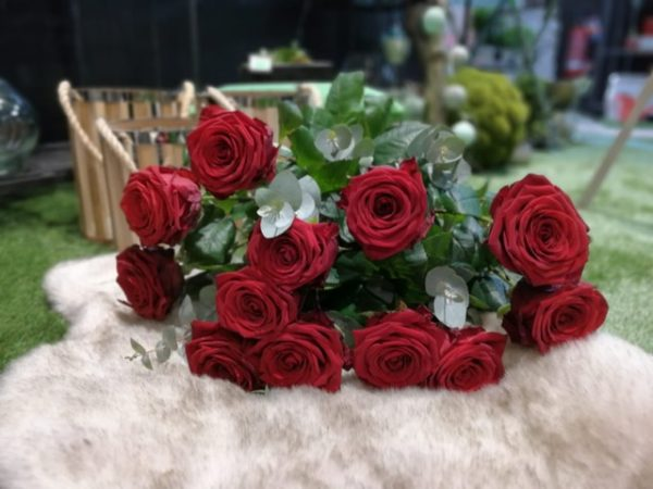 roses rouges romantique